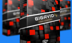 GigaVid V4 Review