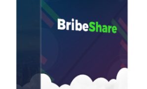 bribeshare review