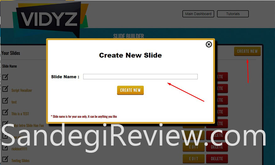 vidyz review